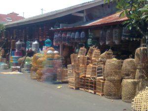Panduan Untuk Peternak yang Menginginkan Pasarkan Jangkrik